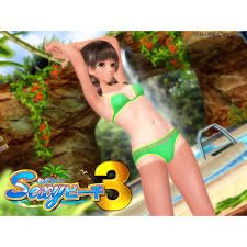 Sexy Beach 3 Crack Free Download PC +CPY CODEX Torrent Game